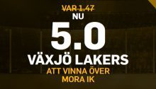 vaxjo lakers