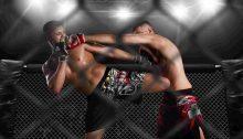 UFC barabetting