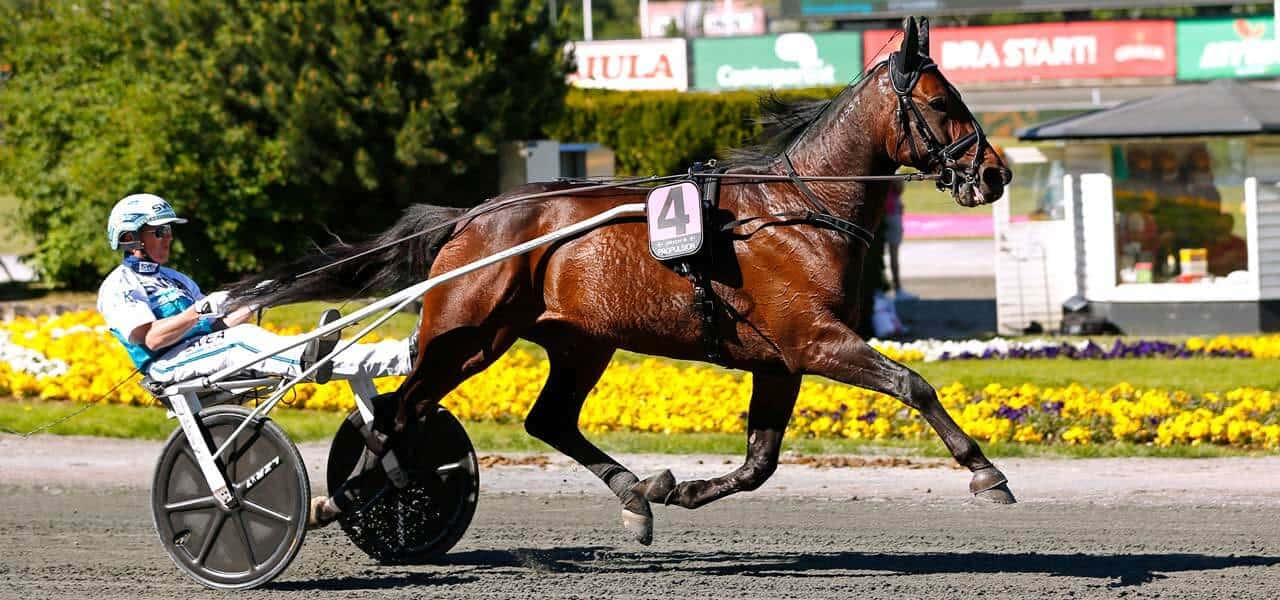 Propulsion-elitloppet 2019