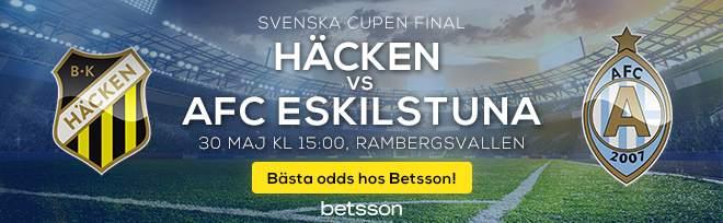 Svenska cupen finalen 2019
