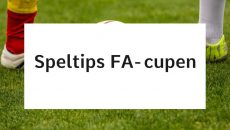 FA-cupen Tottenham Hotspur - Norwich City