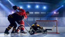 liga pro ishockey